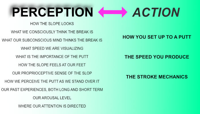 Perception action
