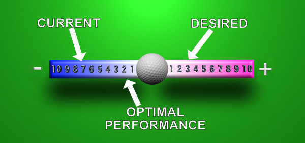 performance scale